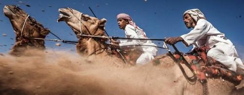 camel_635x250_1438695425_jpeg Pharoah