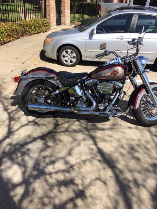 IMG_2260 Big Dave's Harley Hog